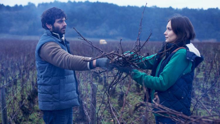 """Jean (Pio Marmaï) og Juliette (Ana Girardot),  jobber med vinrankene gjennom vinteren i """"Vår vingård i Bourgogne"""". (Foto: SF Studios)"""