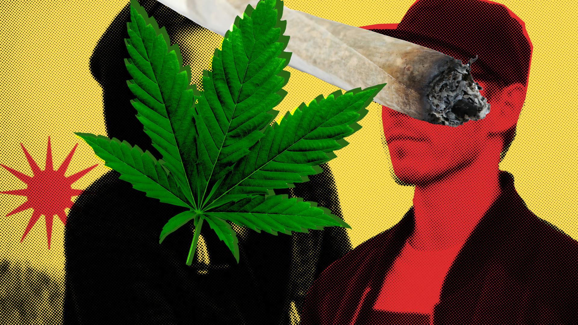 Illustrasjon: Med en gul bakgrunn, ser vi to menn som skurer. En har på seg hettegenser, og vi vi ser kun pannen på mannen –  han er dekket til av en marihuanaplante. Den andre mannen har på seg en caps, jakke og t-skjorte. Vi ser ikke øyner eller øverst i ansiktet, han er tildekket av en joint.